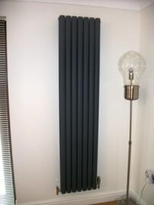 radiators 2009-05-16 003 small