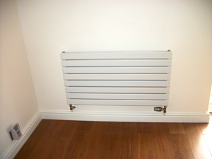 radiators 2009-05-16 004 small